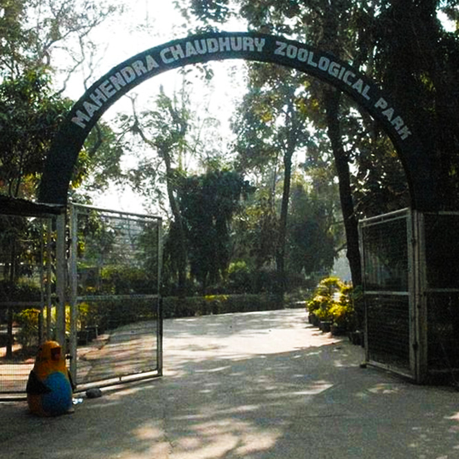CHATTBIR  ZOO/ MAHENDRA  CHAUDHRY  ZOOLOGICAL  PARK